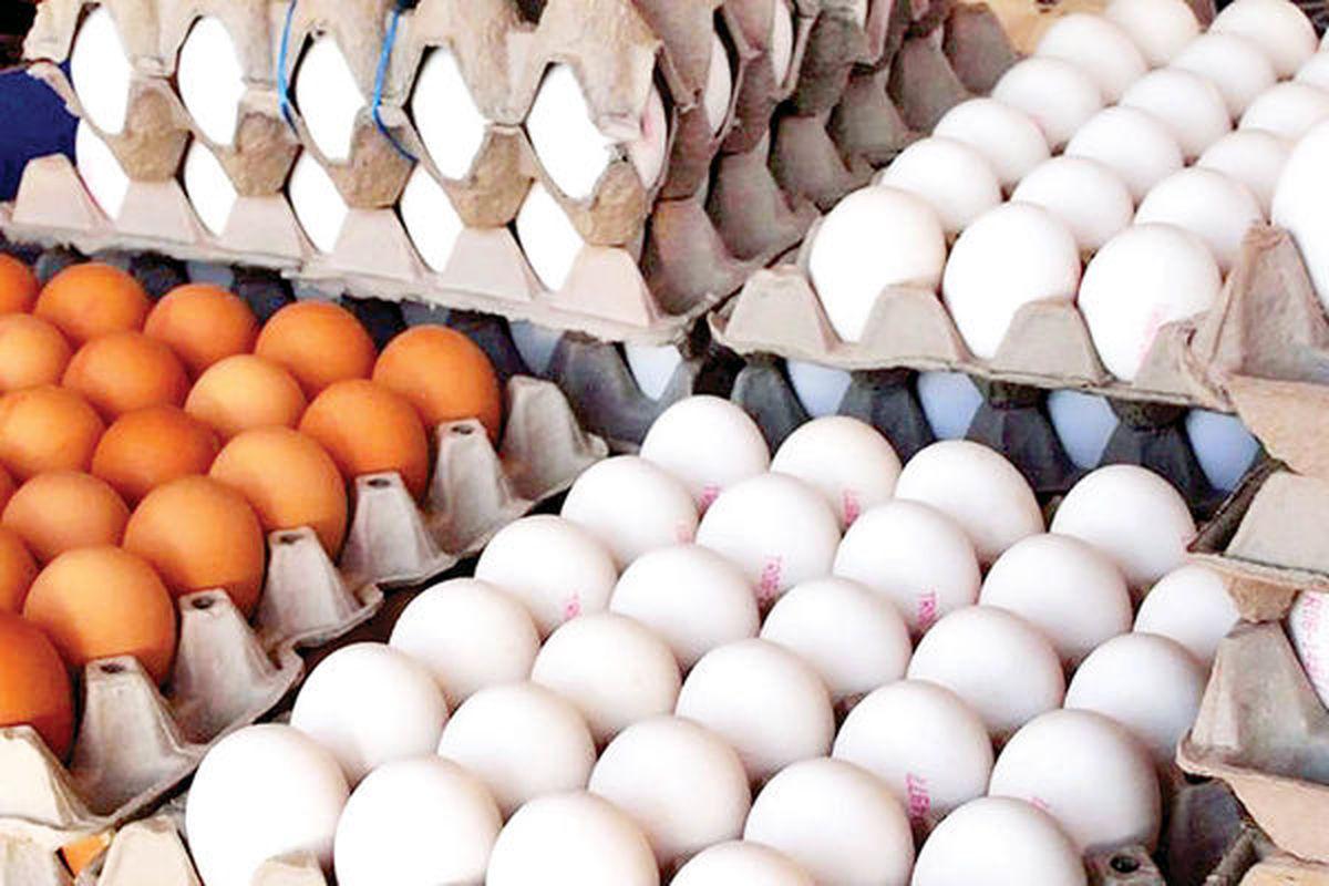 قیمت تخم مرغ امروز 19 مهر 1400| تخم مرغ چشم انتظار نرخ ارز