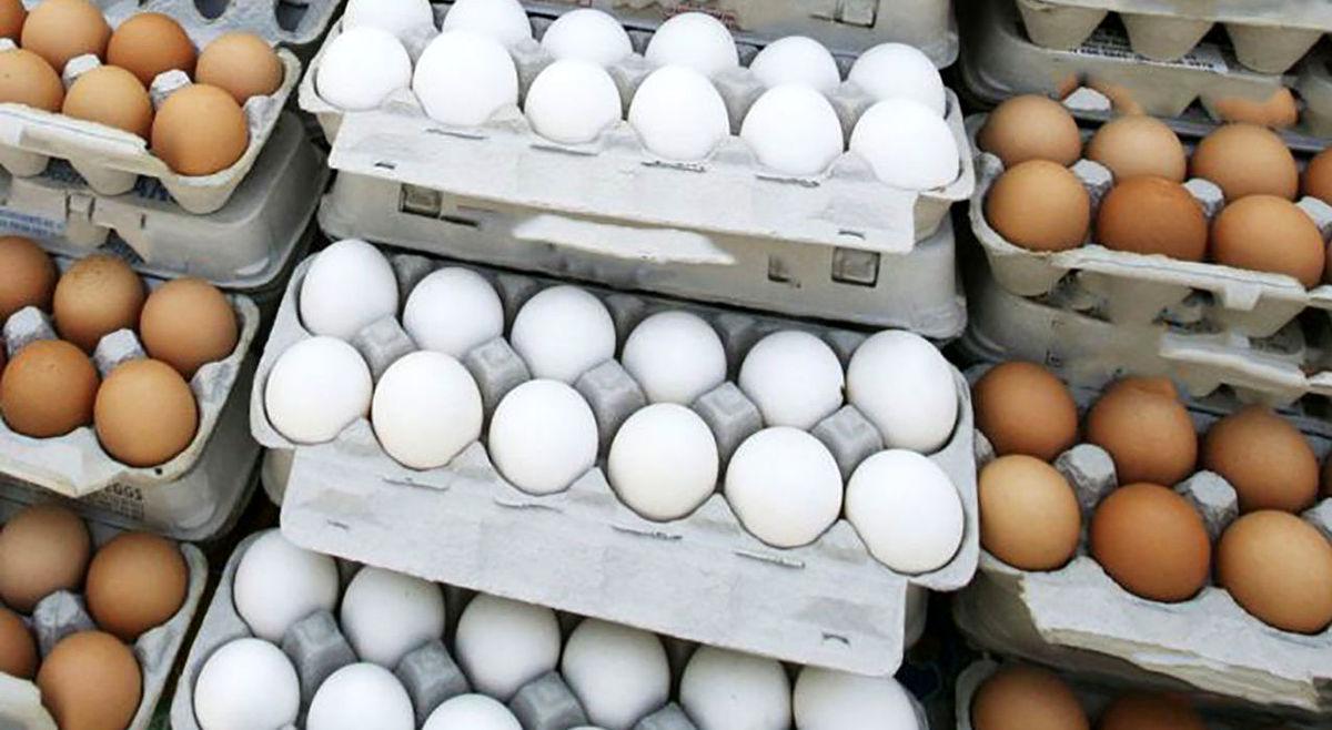 فوری: قیمت تخم مرغ را صمت شکاند